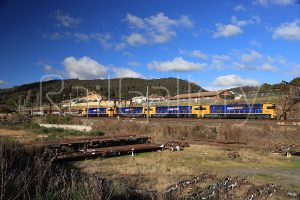 Pacific National - 82 Class locomotive