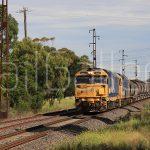 Pacific National - 81 Class locomotive
