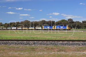 Pacific National - 81 Class locomotive - RailGallery