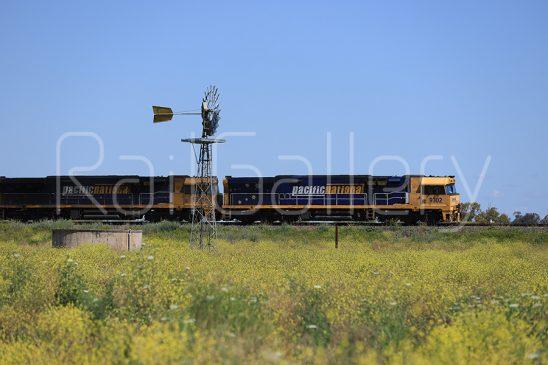 Pacific National - 93 Class locomotive - RailGallery